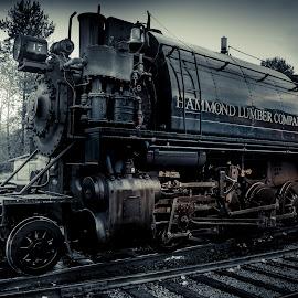 Mt. Rainier Scenic Railway by Mark Kuhns - Transportation Trains ( washington, spokane, photographer, portraits, projectmkp )