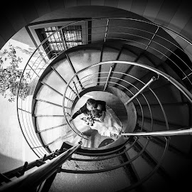 Alessia e Fabio by Mauro Locatelli - Wedding Bride & Groom ( kiss, stairs, black and white, wedding, bride and groom )