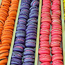 Macaroons by Sue Bernhard - Smith - Food & Drink Candy & Dessert ( colourful, food, macaroons, colours )