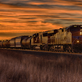 The morning train by Ryan Trullinger - Transportation Trains ( grasses, clouds, railroad tracks, dawn, train )