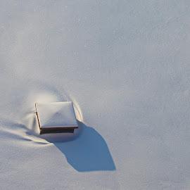 Одинчество by Oleg M Kulishov - City,  Street & Park  Street Scenes ( погода, минимализм, зима,  )