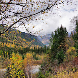Fall by Dave Bower - Landscapes Travel