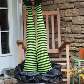 Green Legs Ms. Ham by Roxanne Dean - Artistic Objects Still Life (  )