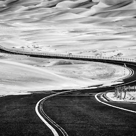 Life by Babar Swaleheen - Black & White Landscapes ( asphalt, monochrome, desert, black and white, road, nikon )