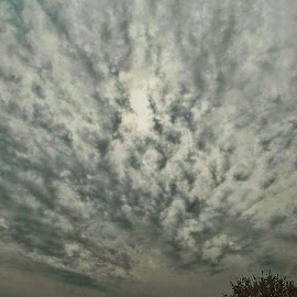Chemtrailsatwork.now by Philip Poillon - Landscapes Cloud Formations