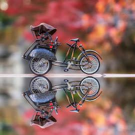 Fall Still Life by Nyoman Sundra - Artistic Objects Still Life ( autumn, still life, fall, artistic object, becak )