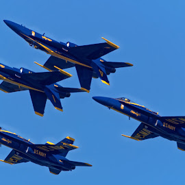 Blue Angels 763 by Raphael RaCcoon - Transportation Airplanes ( blue angels )