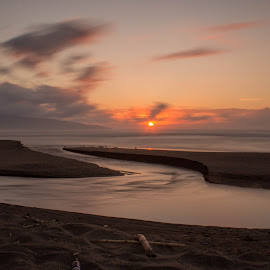Sunset by Ricardo Xavier - Novices Only Landscapes ( clouds, water, sand, sky, sunset, sea, long exposure, birds, longexposure, sun )