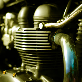 golden engine by Worowsky Papa - Transportation Motorcycles ( bonneville, motorbike, engine, motorcycle, triumph, thruxton )