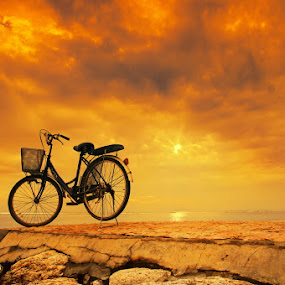 Lonely Morning by Alit  Apriyana - Transportation Bicycles