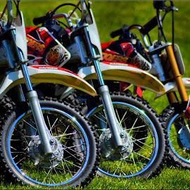 dirt bikes by Nic Scott - Transportation Motorcycles ( bike, motorbike, bikes, motorcycle )
