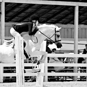Perfection by Brian  Shoemaker  - Black & White Sports ( blackandwhite, jumping, black and white, horse, equestrian, jumper,  )