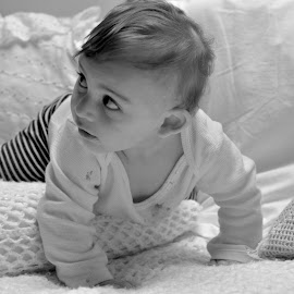 Baby Lincoln  by Brian Melendrez - Babies & Children Babies ( lincoln, 6months, black and white, nephew, cute )