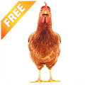 Real Talking Chicken APK for Bluestacks