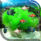 Aquarium Free Live Wallpaper file APK Free for PC, smart TV Download