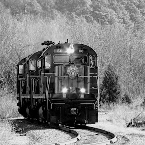 Working In The Ozarks by Rick Covert - Black & White Objects & Still Life ( black and white, vintage, ozarks, trains, arkansas )