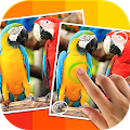 Game Tap 5 Differences apk for kindle fire