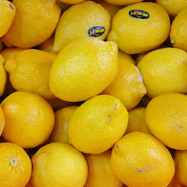 Oranges by Koh Chip Whye - Food & Drink Fruits & Vegetables (  )