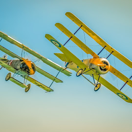 WW1 Dogfight enactment by Anthony P Morris - Transportation Airplanes ( aerolanes, ww1, anthony morris, planes, dogfifght )