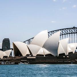 Sydney Opera House by Sue Huhn - Buildings & Architecture Public & Historical ( harbour bridge, sydney harbour, sydney harbour bride, the sydney opera house, sydney )