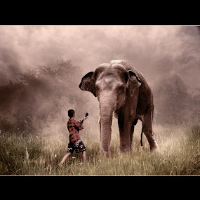 Singing a Life by D'cast Photowork - Digital Art People ( elephant, digital art, art, people, animal )