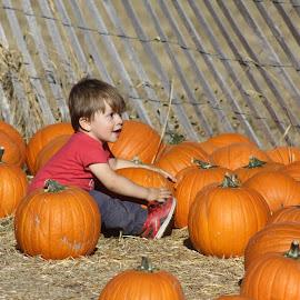 This is my very own Pumpkin by Snow Losh - Babies & Children Children Candids