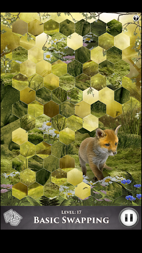 Hidden Scenes - Cute Critters - screenshot