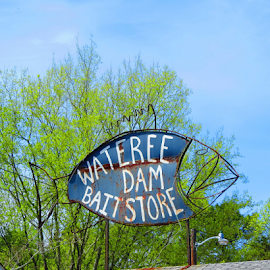 Bait Fish by Hal Gonzales - Artistic Objects Signs ( shop, signs, fish, sign, store,  )