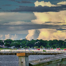 SUMMER CLOUDS AT THE BEACH by