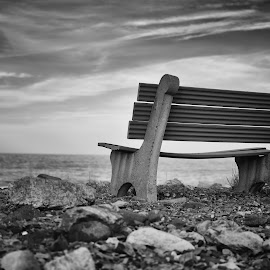 Solitary Bench by Kara Langlois - Novices Only Landscapes ( bench, black and white, beach, landscape, new hampshire )