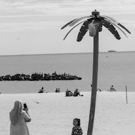 Palm Tree by VAM Photography - People Street & Candids ( places, b&w, nyc, coney island, people )