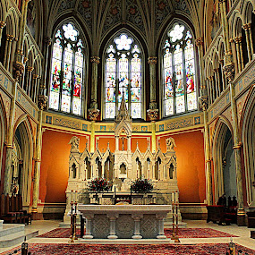 St. John the Baptist by Tina Stevens - Buildings & Architecture Places of Worship ( religious, city, church, stained glass, savannah, windows, building, interior, nave, georgia, altar, christian, catholic, arch, saint john the baptist, worship, architecture,  )