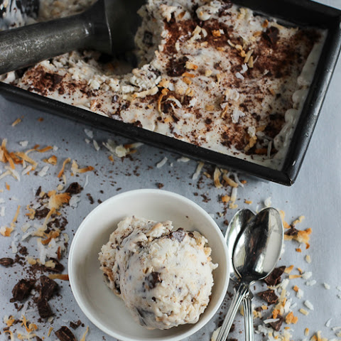 Dairy Free Toasted Coconut Ice Cream