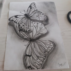 butterfly by Sanaz Shahraki - Drawing All Drawing ( art, painting, butterfly, sanazshahraki, drawing )