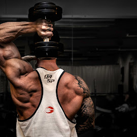 Triceps Training by Albin Berlin - Sports & Fitness Fitness ( sweden, fitness, muscles, muscle, shredded, bodybuilding, gym )