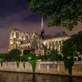 Notre Dame - Paris by Peter Liakopoulos - Buildings & Architecture Places of Worship ( paris, night photography, church, travel, historical )