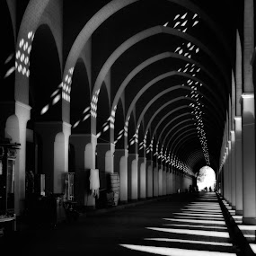 BirAli Mosque Madinah by Amril Nuryan - Buildings & Architecture Architectural Detail ( mosque, bw, perspective )