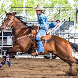 Power by Sarah Sullivan - Sports & Fitness Other Sports ( #dalby, #sarahsullivanphotography, #barrelracing, #qbra )