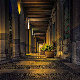 by Michele Kerstholt - Buildings & Architecture Architectural Detail ( lights, hdr, shadow )