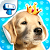 My Dog Album - Cute Puppy Sticker Book file APK Free for PC, smart TV Download