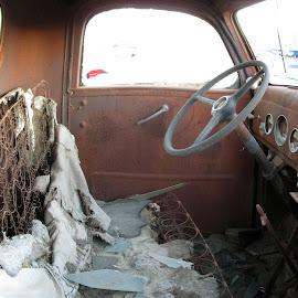 Trashed by Howard Mattix - Transportation Automobiles ( interior, pickup trucks, trashed, rust, antique )