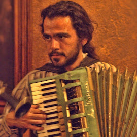mexico accordion player by Jim Knoch - People Musicians & Entertainers