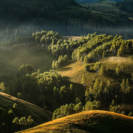 by Flaviu Negru - Landscapes Mountains & Hills