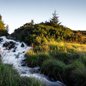 Big stream in tal grass by Thomas Sjøen - Landscapes Waterscapes ( stream, tal, grass, karmøy, norway )