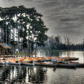 Paris Lake by Tawfik Dajani - Landscapes Waterscapes
