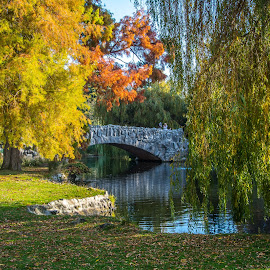 by Keith Sutherland - City,  Street & Park  City Parks