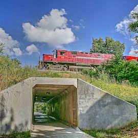Arkansas Missouri Train by Jay Stout - Transportation Trains