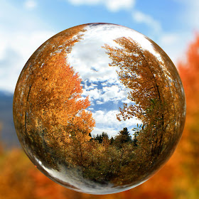 IMG_6784-Fall Into The Bubble.jpg