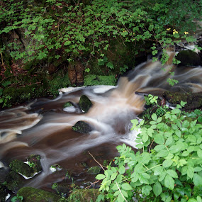 Stream by Mike Hawkwind - Novices Only Landscapes ( water, waterfall, avon, landscape, river )