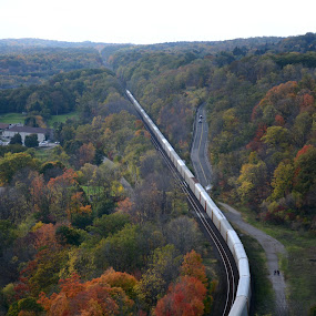 Onward! by Vita Perelchtein - Novices Only Landscapes ( hill, dundas, canada, green, forest, ontario, yellow, dundas peak, colours, red, nature, fall, train, trees, hamilton, proud, hike )